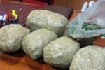 sequestrata_marijuana