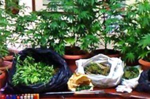 sequestro_mini_serra_marijuana_mascalucia