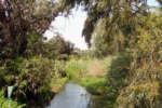 riserva_fiumefreddo_sicilia
