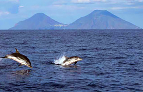 delfini_eolie