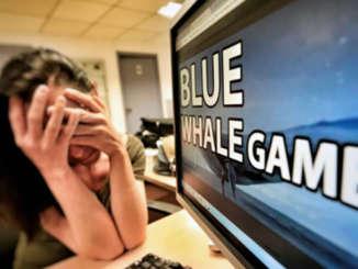 blue_whale_gioco_mortale