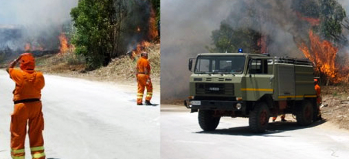 incendio_bosco