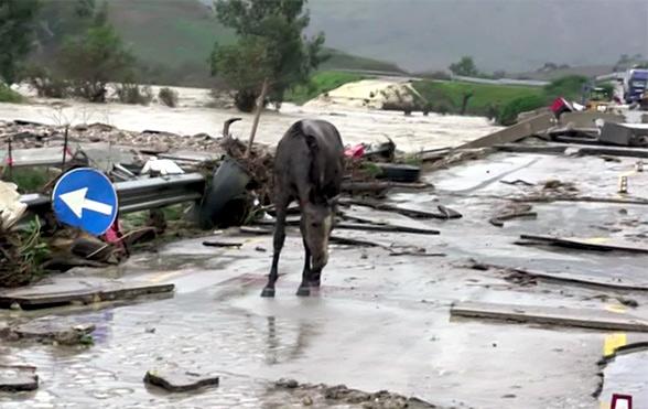 Maltempo: il furore della natura. 12 morti