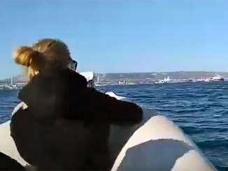 sea_watch_bitz_politici_1