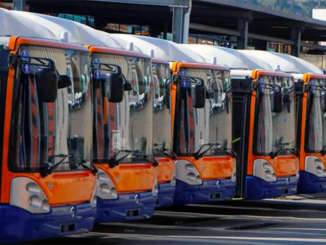 bus_amat_pa