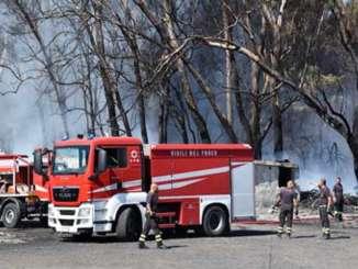 boschetto_plaia_incendio_vigili_del_fuoco
