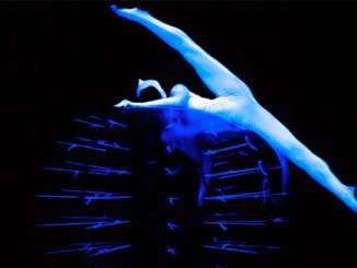 eVolution_dance_Black__Light