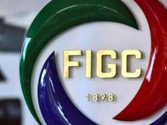 figc_logo_4
