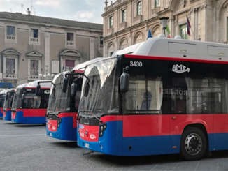 amt_nuovi_bus